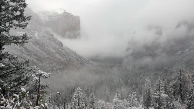 vídeos y material grabado en eventos de stock de a winter scene in yellowstone national park with snow on the trees. - sierra nevada de california
