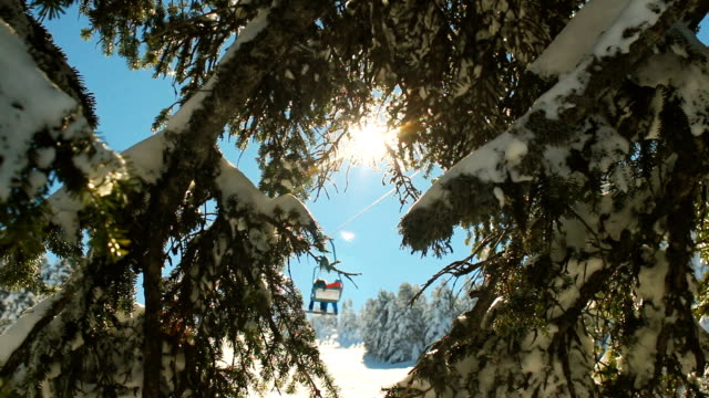 winter scene. sunbeams hitting the lens through snowy pine branches while ski lift passes at the background - skiwear stock videos & royalty-free footage