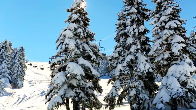 Winter-Szene. Sonnenstrahlen, die das Objektiv durch verschneiten Tannenzweigen zu schlagen, während der Skilift im Hintergrund passiert