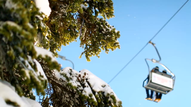 winter scene. sunbeams hitting the lens through snowy pine branches while ski lift passes at the background - seggiovia video stock e b–roll