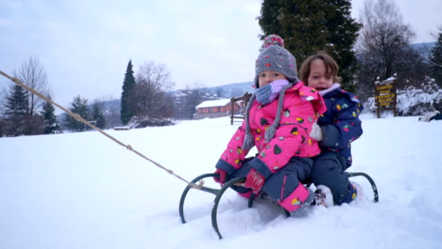 winter sleigh ride - sledge stock videos & royalty-free footage