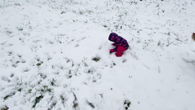 winter, schnee und junges mädchen mit hunden - vorschulkind stock-videos und b-roll-filmmaterial