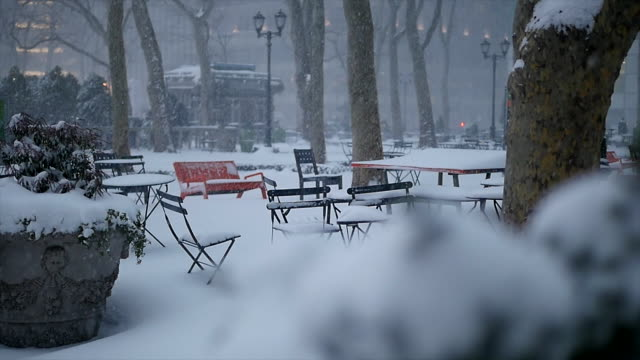 winter snow storm blizzard in new york city. snowfall background shot in slow motion - cafeteria stock videos and b-roll footage