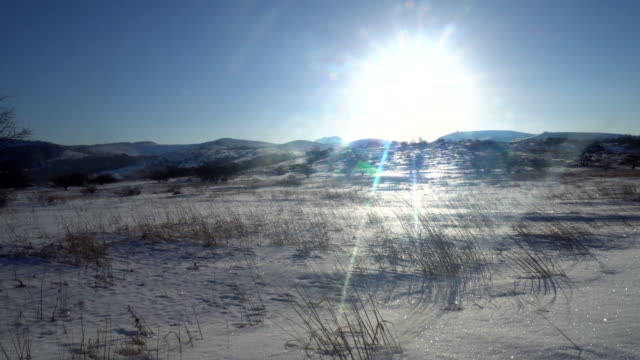 冬ユキコの風景 - ゲレンデ点の映像素材/bロール