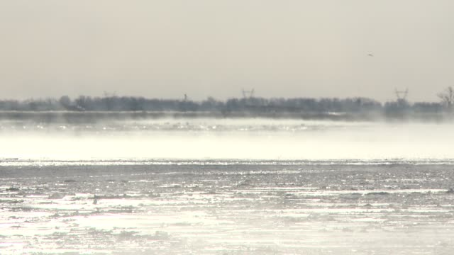 Winter Storm Ion's wind whips up snow on the frozen surface of the Mississippi River Open patches of river steam in the frigid air near St Louis...