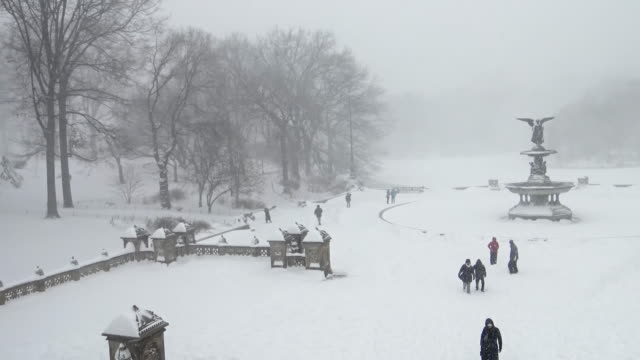 winter storm jonas on january 23, 2016 / central park fountain, bethesda terrace during snow storm / manhattan, new york city, usa - ベセスダ点の映像素材/bロール