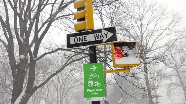 Winter storm Jonas on January 23 2016 / Footage of Central Park during snow storm / Manhattan New York City USA