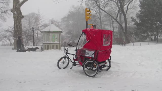 Winter storm Jonas on January 23 2016 / Footage of Central Park during snow storm / Manhattan New York City USA
