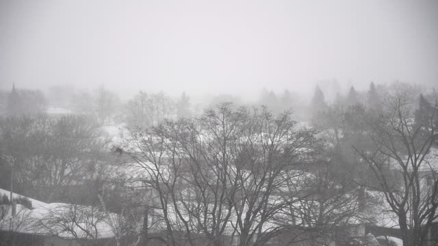 Winter storm with heavy snowfall in Toronto city, Canada