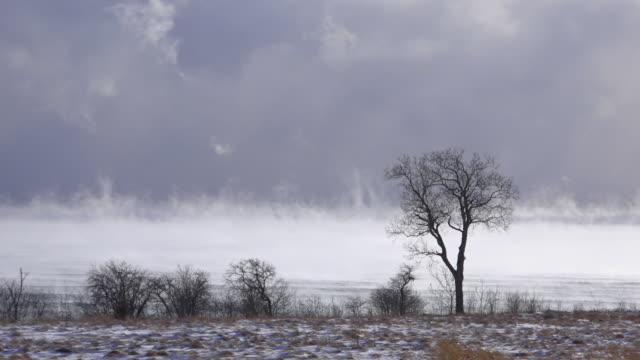 stockvideo's en b-roll-footage met winter storms lake ontario - ontariomeer