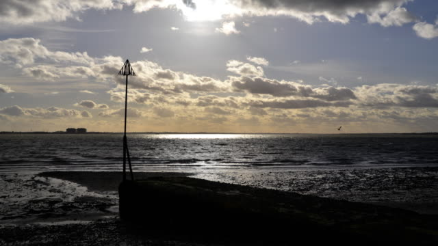 winter sun over the blackwater estuary - nuclear power station stock videos and b-roll footage