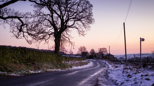 winter sunrise in the wharfe valley - bare tree stock videos & royalty-free footage
