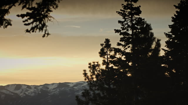 winter sunset near lake tahoe - ast pflanzenbestandteil stock-videos und b-roll-filmmaterial