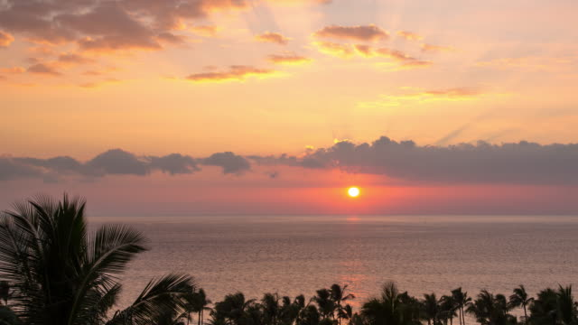 A winter time lapse of the sun setting over the Pacific Ocean from Maui, Hawaii, featuring the tops of palm trees moving in the wind and clouds at both high and medium altitudes