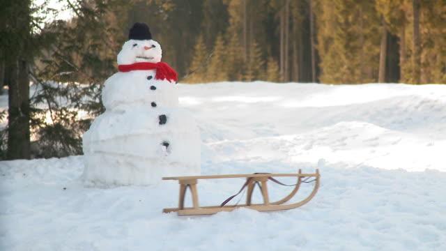 hd: winter zeit - schneemann stock-videos und b-roll-filmmaterial
