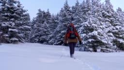 Winter Traveler, Wide Shot of One Young Woman Tourist Walking Through Deep Snow, Enjoying the Winter Mountain, Portrait, Winter Sport, Travel, Exploration, Adventure, Tourism, Determination, Athlete, Outdoors, Mountain Hiking,  Backpacker