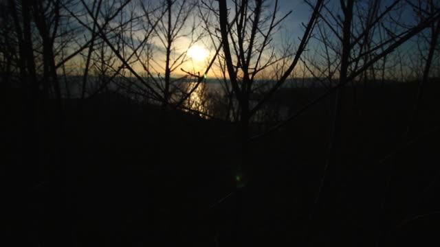vídeos de stock e filmes b-roll de winter trees close up, in italy - lightweight