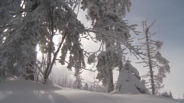 winter - 40 sekunder eller längre bildbanksvideor och videomaterial från bakom kulisserna