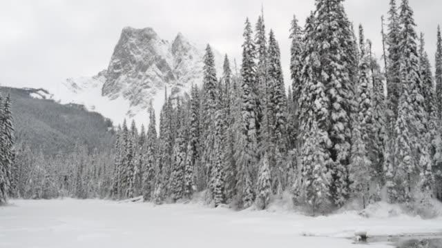 エメラルド湖の冬の景色 - winter点の映像素材/bロール