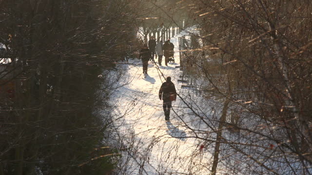 Winter walk in sunshine