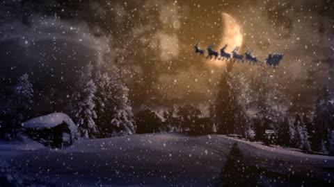 winter wonderland - pine tree stock videos & royalty-free footage