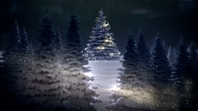 winter's tale - stock video - christmas tree stock videos & royalty-free footage