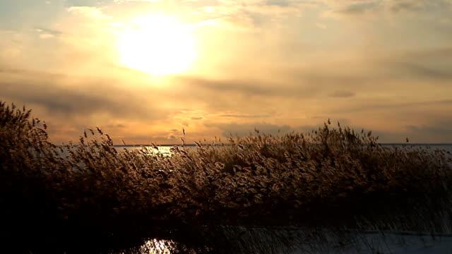 vídeos y material grabado en eventos de stock de atardecer lago wintry - imagen virada