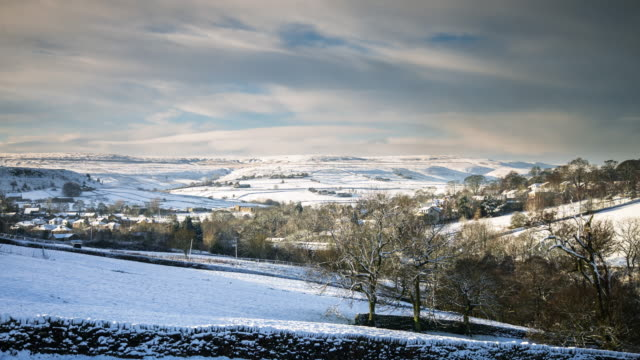 wintry day in yorkshire - bare tree stock videos & royalty-free footage