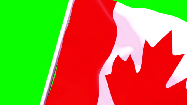 wipe transition flag of canada 4k 60 fps - canadian flag stock videos & royalty-free footage