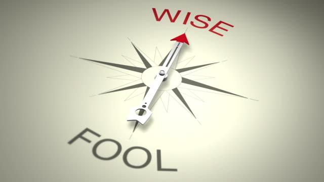 wise versus fool - drongo stock videos & royalty-free footage