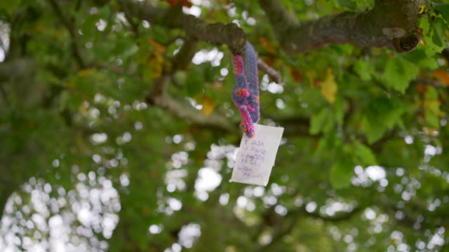 a wish blowing in the wind in the famous beach trees at avebury, wiltshire, uk - avebury stock videos & royalty-free footage