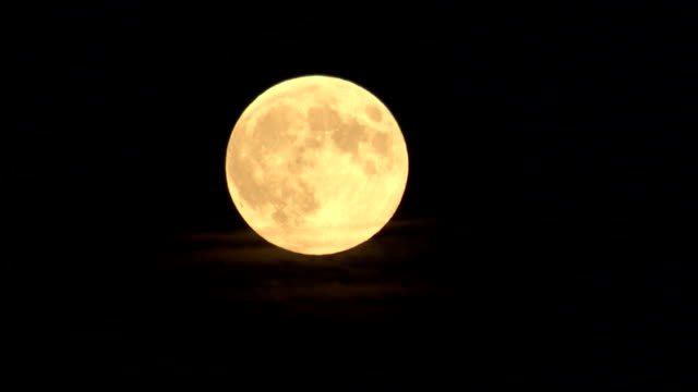 wispy clouds float beneath a full moon. available in hd. - full moon stock videos & royalty-free footage