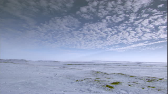 Wispy clouds over frozen tundra. Available in HD.