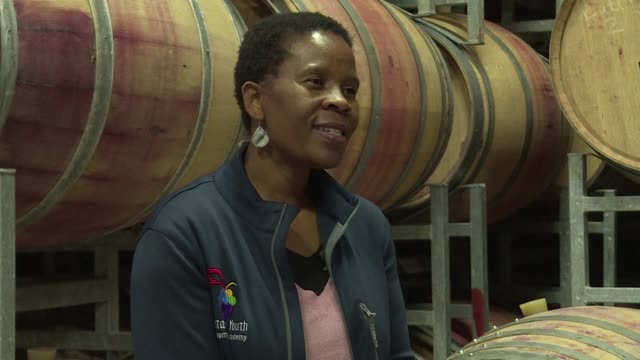 vídeos y material grabado en eventos de stock de with a history dating back over three centuries south africa's world renowned wine industry has long been the domain of generations of just a few... - cabo winelands
