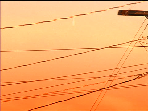 sequence with flash frames of telephone lines + telephone poles at sunset - linea telefonica video stock e b–roll