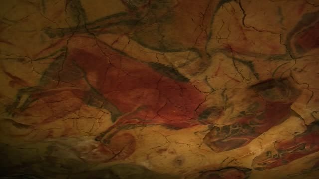 stockvideo's en b-roll-footage met with its 14000yearold red bison spain's altamira cave paintings reopened to a handful of visitors thursday giving them a glimpse of some of the... - geproduceerd segment