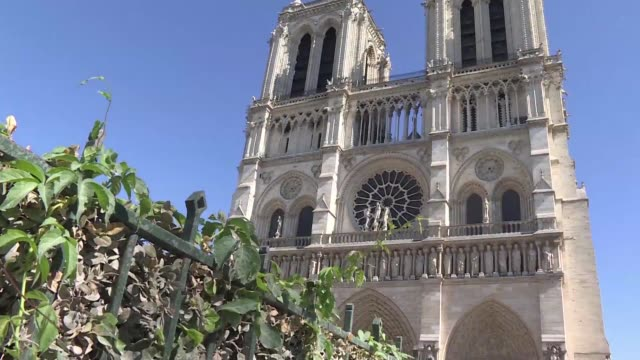 with its twin towers stained glass windows gargoyles and flying buttresses notre dame de paris is one of the most recognizable sites in the world and... - notre dame de paris stock videos & royalty-free footage