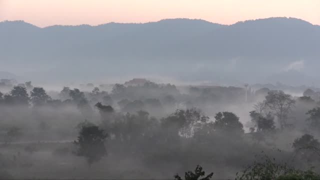 With shot of elephant The mist is caused by the Mekong and Ruak rivers in the Golden Triangle in northern Thailand