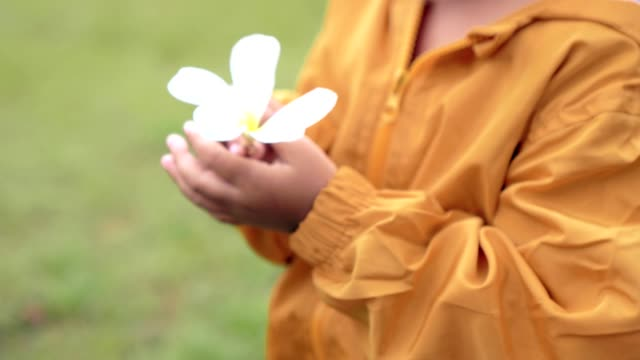 with white flower close up hand Asian girl-child
