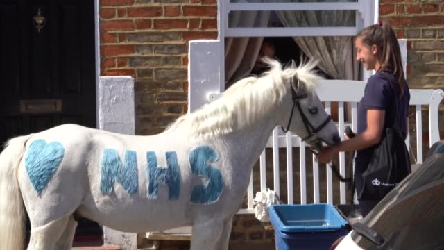 wizz the pony from the park lane stables in teddington has started making visits to local children since the start of britain's coronavirus lockdown - 18 19 years stock videos & royalty-free footage