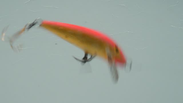 wobbler in a water