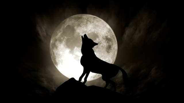 Wolf and Moon (Loopable)