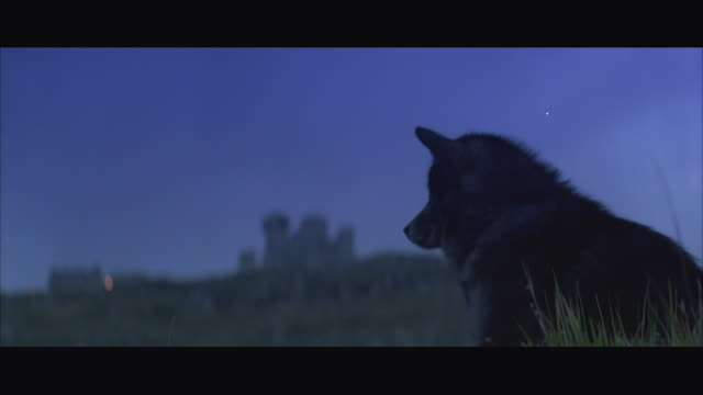 MS Wolf howling with monastery in background