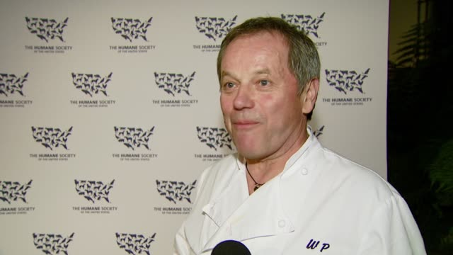 wolfgang puck on the food for the evening and on what he wanted guests to realize from eating tonight's vegetarian cuisine at the 'hollywood goes... - wolfgang puck stock videos & royalty-free footage