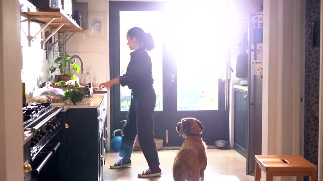woma and dog leaving kitchen with plate of food - mammal stock videos & royalty-free footage