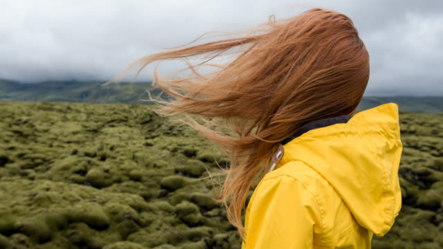 woman admiring mossy landscape - wind stock videos & royalty-free footage