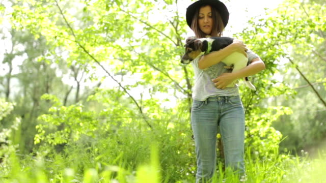 woman and a perky dog - jack russell terrier stock videos & royalty-free footage