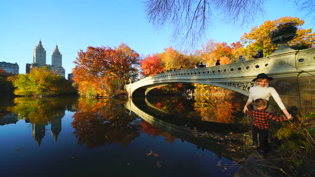woman and boy stand beside the bow bridge at the lake in central park on november 8, 2020 in new york city. - number 8 stock videos & royalty-free footage
