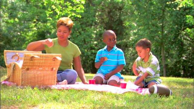 woman and boys picnicking - この撮影のクリップをもっと見る 1278点の映像素材/bロール