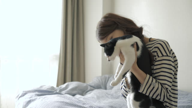 woman and cat relaxing on the bed - ペット点の映像素材/bロール